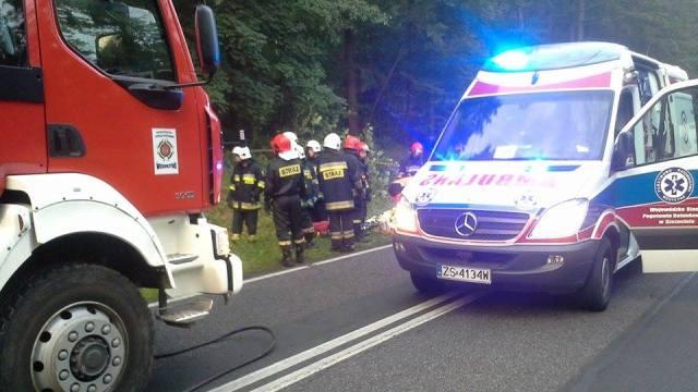 Samochód wypadł z drogi i uderzył w drzewo.