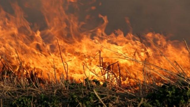Płonie 5 hektarów trawy na nieużytkach koło Węgorzyna.