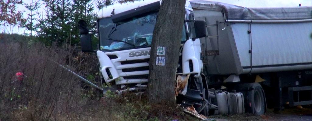 Ciężarówka uderzyła w drzewo pod Zajezierzem.