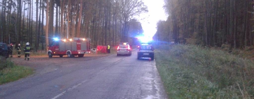 Śmiertelny wypadek na drodze pod Trzebiatowem