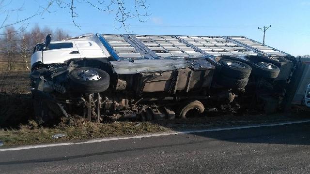 Czaplinek: Zderzenie osobówki z ciężarówka przewożąca młode prosiaki.
