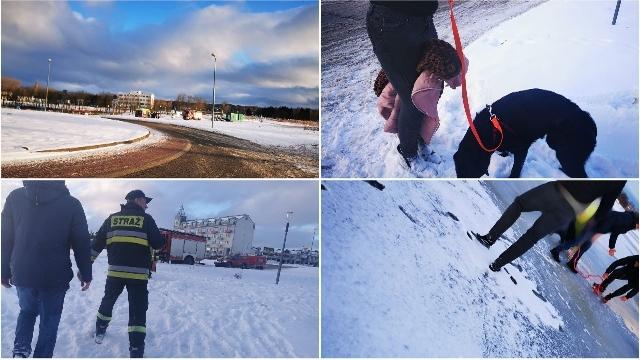 Koszalin. Pod czworonogiem załamał się lód, mężczyzna ruszył na pomoc, też wpadł do wody.
