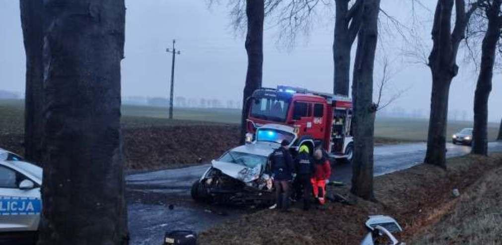 Dobra. Auto uderzyło w drzewo. Kierowca zakleszczony. Interweniuje śmigłowiec lpr