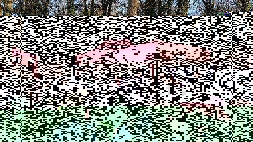 Uroczystości pogrzebowe Łukasza Urbana, kierowcy zabitego w zamachu terrorystycznym w Berlinie