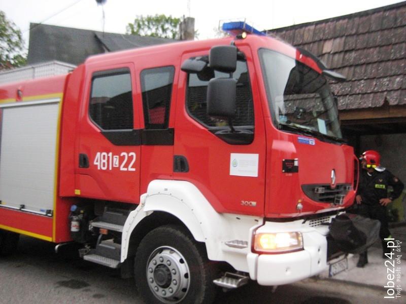 Strażacy usuwają gniazdo os na ul. Ogrodowej, a wcześniej gasili śmieci w Przemysławiu